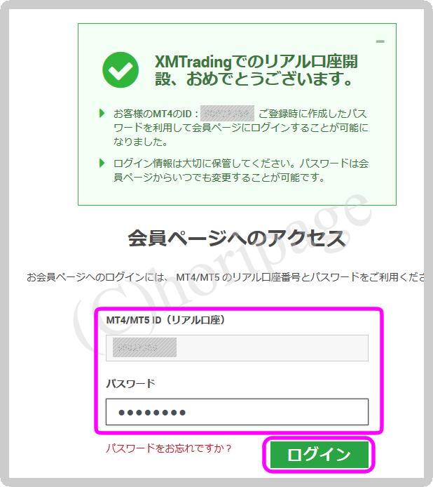 XMリアル口座の登録手順の解説図10